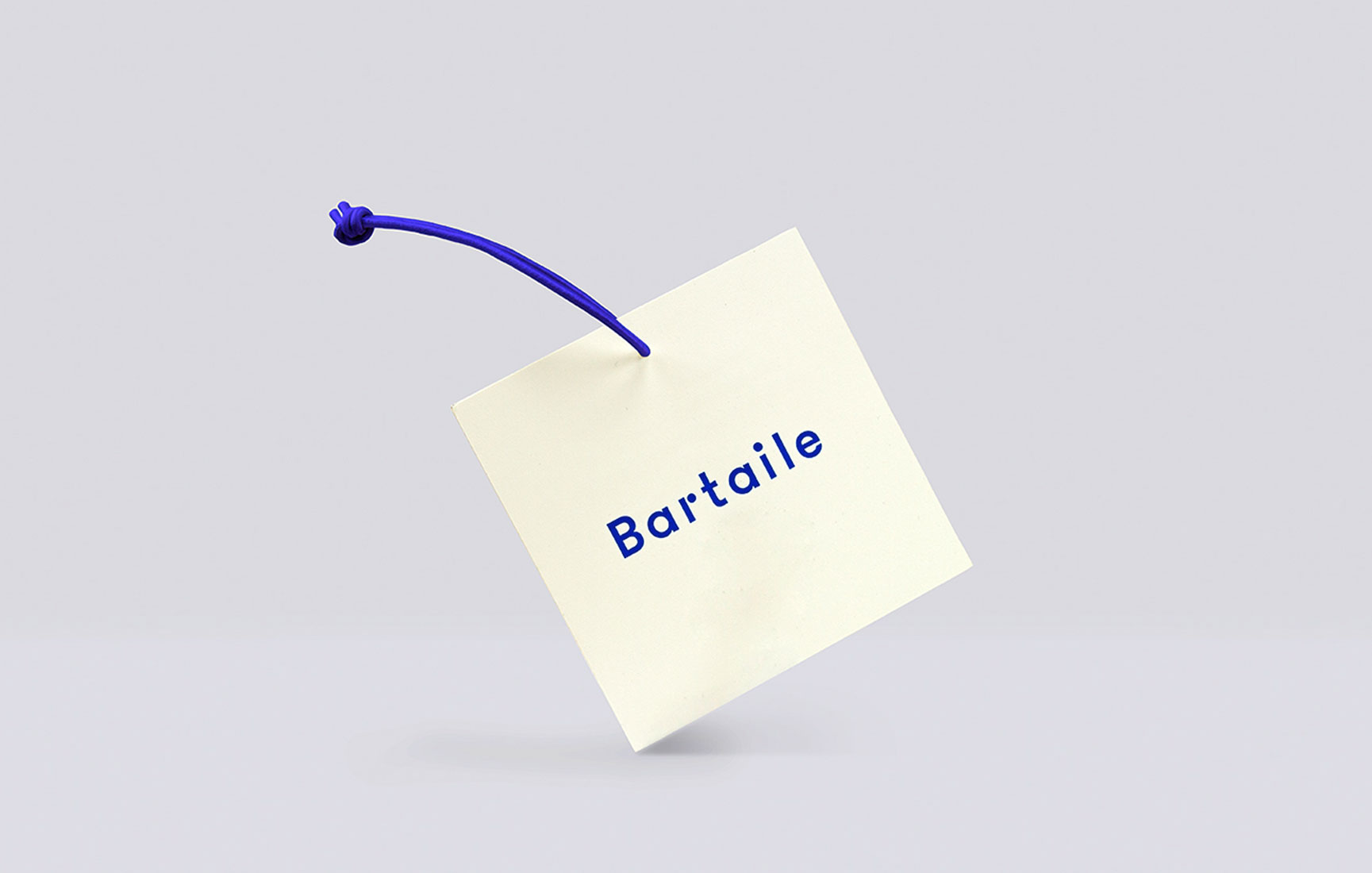 bartaile_work_02